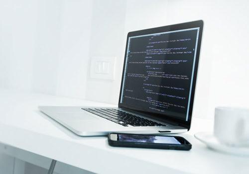 web-developer-career